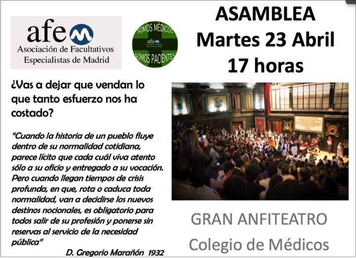 Asamblea_AFEM